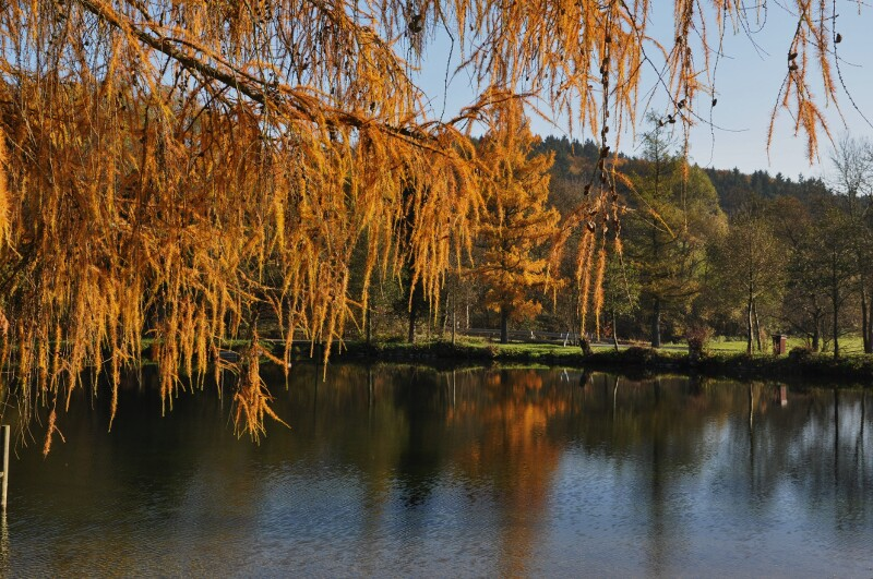 Herbst am See 2015